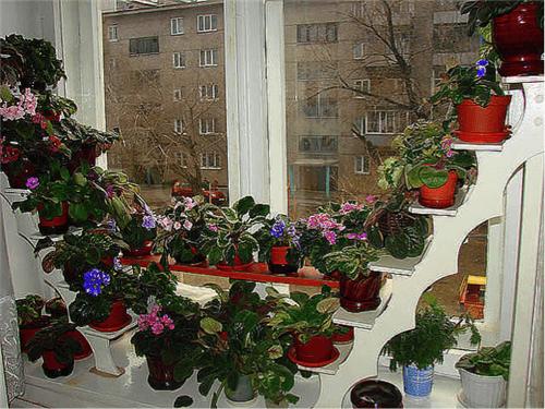 Пластиковые окна с широким подоконником в городе Химки